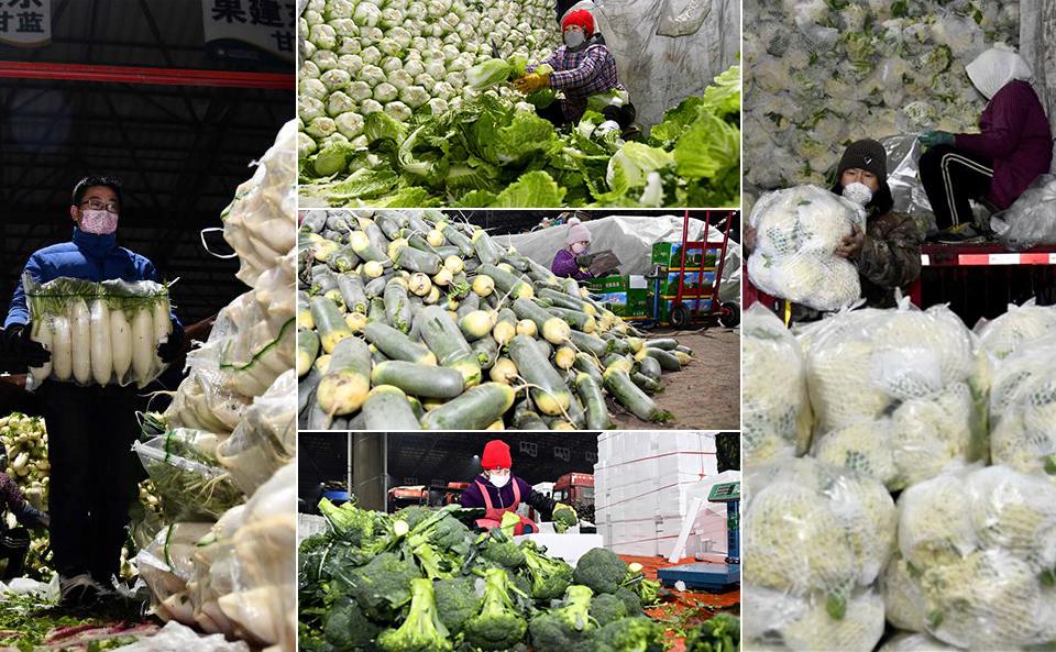 山东寿光积极保障蔬菜供应